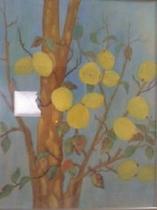 花梨の木 日本画