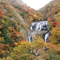 大子町 袋田の滝