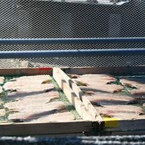【天草の風景】天草の海で水揚げされた魚は手作りで干物に加工されます