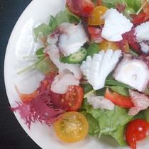 【ヘルシー海鮮サラダ一例】1日に必要摂取量の半分の野菜がこの一皿に!