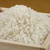 美味しいお米♪近江米♪(イメージ)