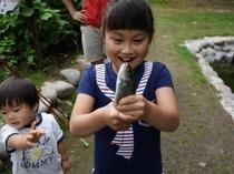 自作の毛ばりで釣った魚