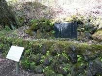 旧軽井沢の室生犀星の詩碑