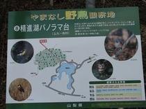 パノラマ台ハイキングコース