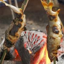 鮎塩焼き/火鉢(夏)