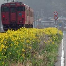 のんびり電車の旅