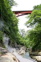 夏の大噴湯 橋の下