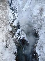 冬の大噴湯