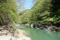 大噴湯を流れる皆瀬川