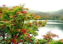 栗駒の湖 須川湖