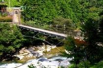 夏鮎もどし吊り橋