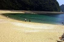 夏グリーン鶏知海岸