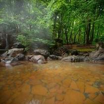 露天温泉岩風呂(サマーイメージ)