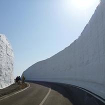 八幡平アスピーテライン雪の回廊