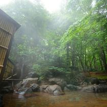 露天温泉岩風呂(イメージ) 単純硫黄泉をお楽しみ下さい。