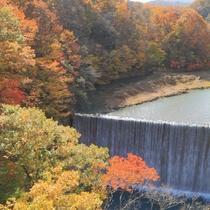 森の大橋から望む松川