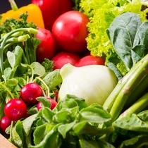 地元産の野菜を中心にご提供しております(イメージ)