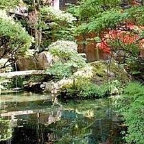 新緑が映る日本庭園