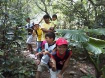 ジャングル探検