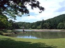 ◇毛越寺庭園大泉が池