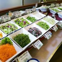 ■サラダ(朝食バイキング)