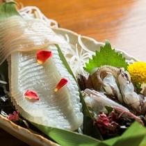 函館といえば、新鮮なイカ!お刺身でどうぞ。