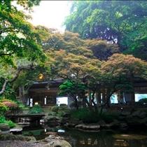 ■啄木亭の庭園