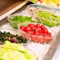 シャキシャキ食べる新鮮野菜にお子様も野菜好きに大変身!?