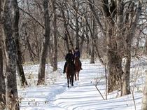 冬の乗馬トレッキング2