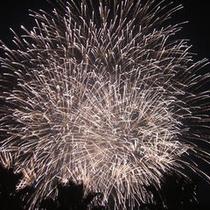 志摩スペイン村の夜の花火♪花火にキャラクターがあがるよ。じっくり観ててね。