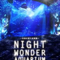 江ノ島水族館-ナイトワンダーアクアリウム2016-