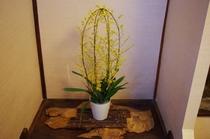 ロビーのお花