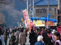 2011年伊豆河津桜祭り!