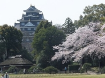 岡山城 隣接する後楽園からの景観。(春)