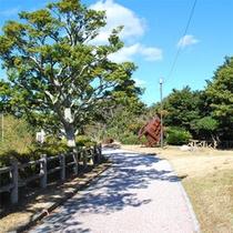 志賀島展望台