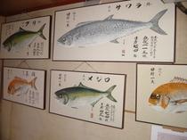 1階フロントに掲載の魚たち。釣果があればお刺身で。秋はお楽しみ!!