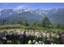 岩岳ゆり園からの白馬三山