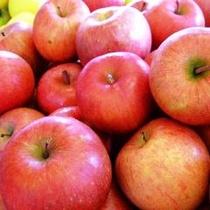 信州のりんご狩り