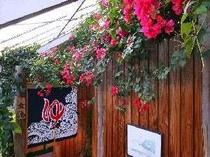 【風呂】温泉浴場の入り口には一年中ブーゲンビリアが咲き乱れる
