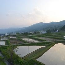 *【お部屋からの眺め】のどかな田園風景が広がります。