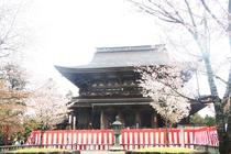 吉野山金峯山寺蔵王堂
