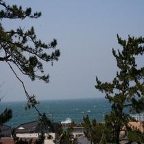 高台から眺める日本海