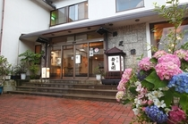 【初夏】例年6月ごろになりますと、当館の入口付近の紫陽花も美しく咲き始めます