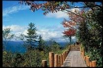 ハンターマウンテン山頂遊歩道