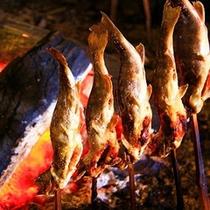岩魚の塩焼き500