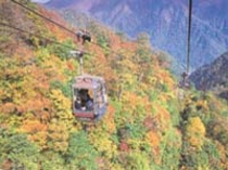谷川岳ロープウェー