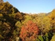 客室から望む乗鞍岳と紅葉