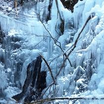 氷柱プラン イメージ