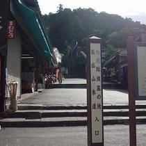 【飯盛山】白虎隊が自刃した場所、また非常に珍しい建造物さざえ堂があります。(当館よりお車で約10分)