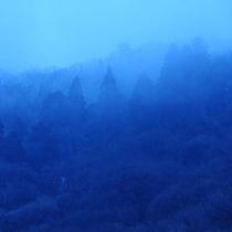 千代滝のすぐ裏にある山は時間や季節で表情が変わります